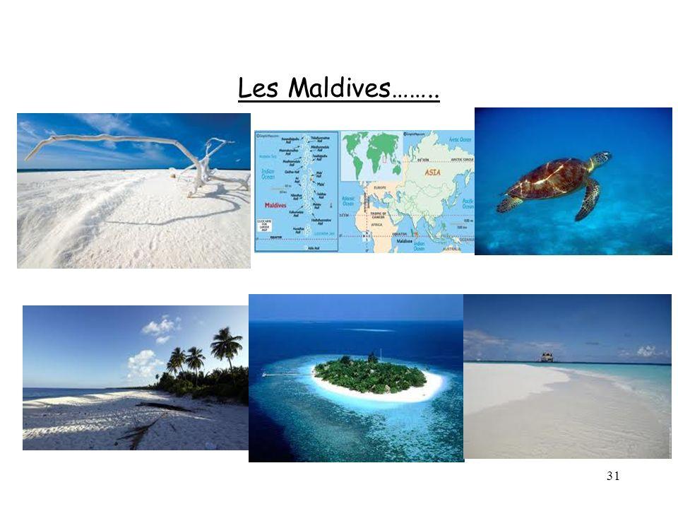 31 Les Maldives……..