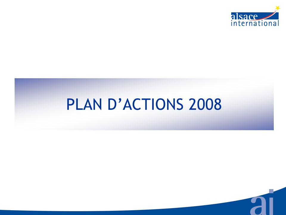PLAN DACTIONS 2008