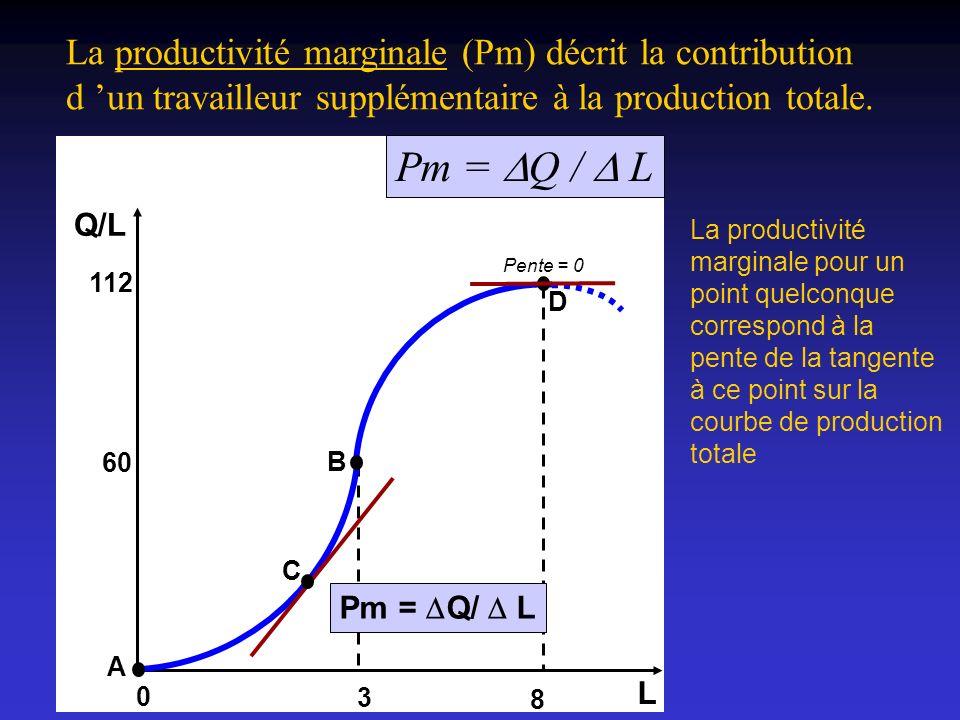 La productivité marginale (Pm) décrit la contribution d un travailleur supplémentaire à la production totale. La productivité marginale pour un point