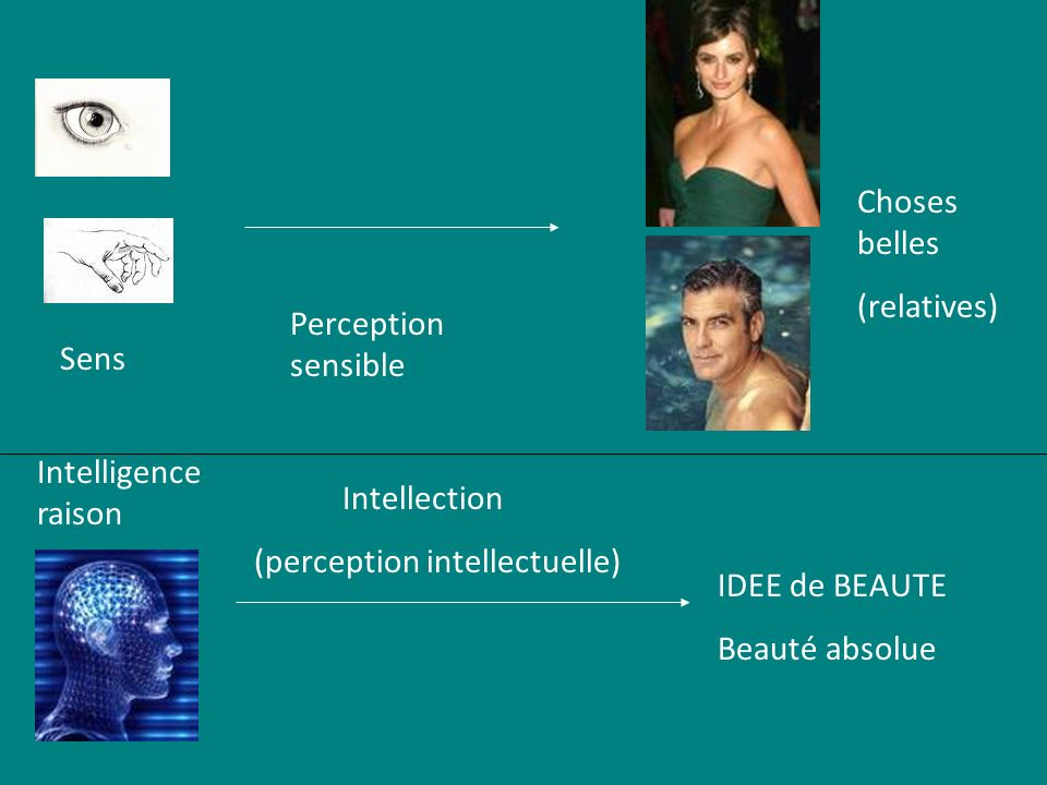 Sens Perception sensible Intellection (perception intellectuelle) IDEE de BEAUTE Beauté absolue Intelligence raison Choses belles (relatives)