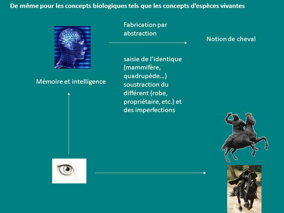 De même pour les concepts biologiques tels que les concepts despèces vivantes Mémoire et intelligence Notion de cheval Fabrication par abstraction sai