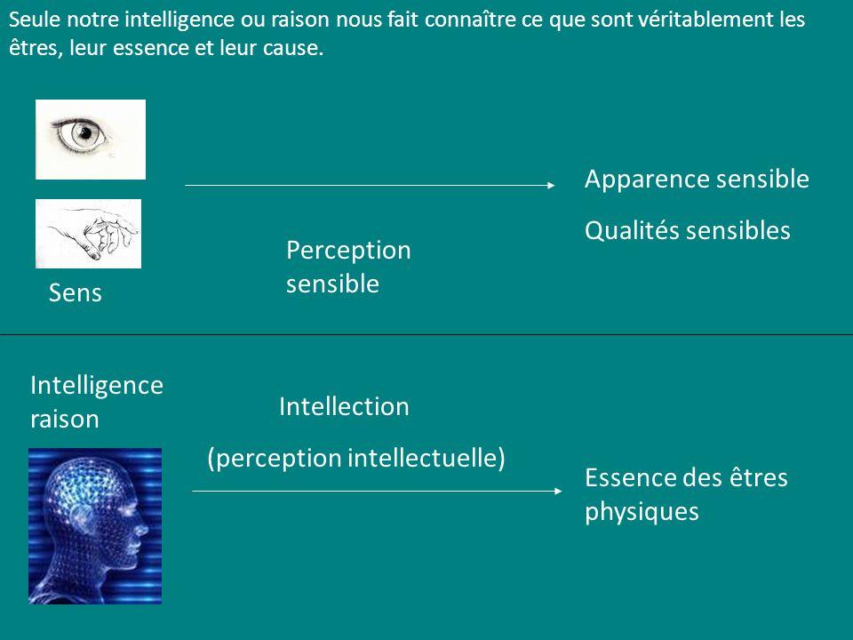 Sens Perception sensible Intellection (perception intellectuelle) Essence des êtres physiques Intelligence raison Apparence sensible Qualités sensible