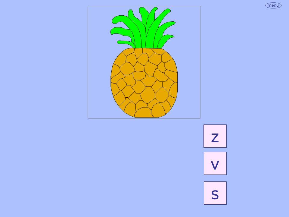 z v s