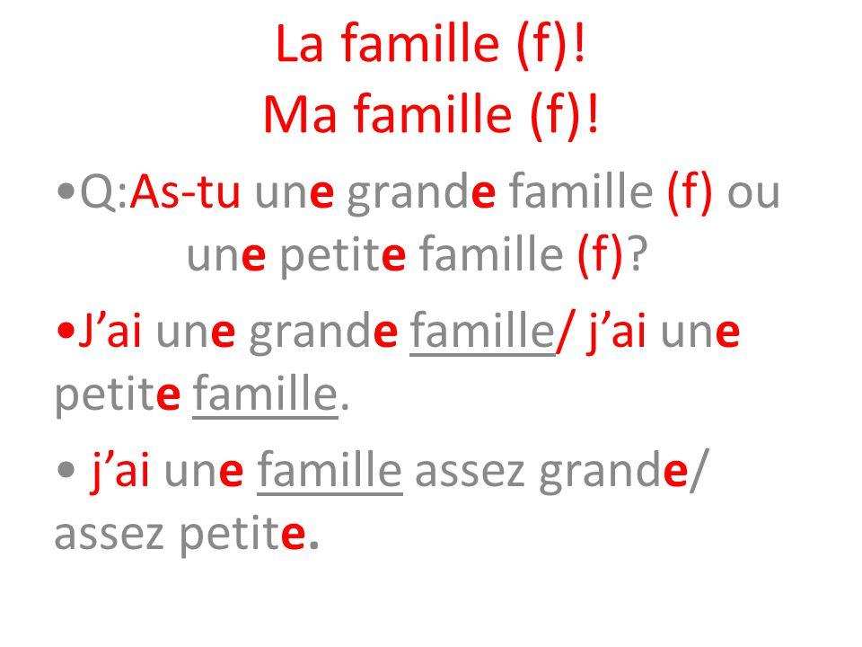 La famille (f)! Ma famille (f)! Q:As-tu une grande famille (f) ou une petite famille (f)? Jai une grande famille/ jai une petite famille. jai une fami