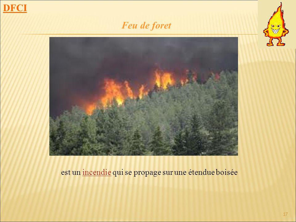 17 est un incendie qui se propage sur une étendue boiséeincendie DFCI Feu de foret