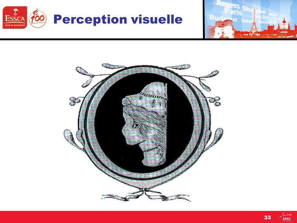 Perception visuelle 33