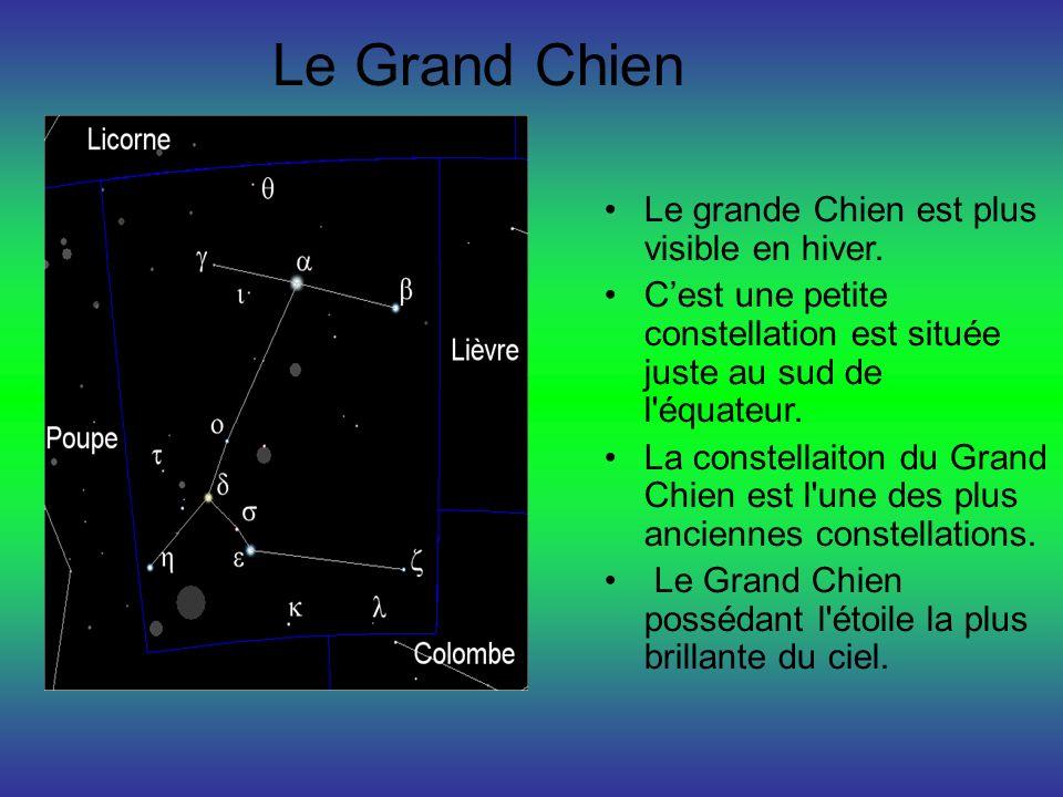 Le Grand Chien Le grande Chien est plus visible en hiver. Cest une petite constellation est située juste au sud de l'équateur. La constellaiton du Gra