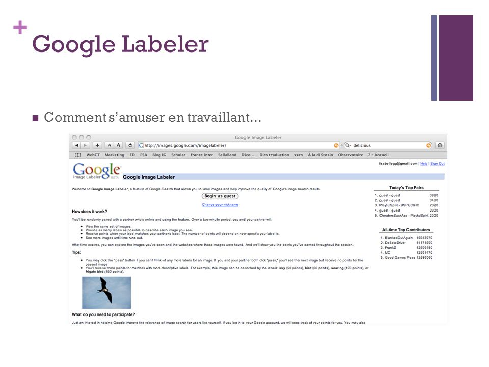 + Google Labeler Comment samuser en travaillant...