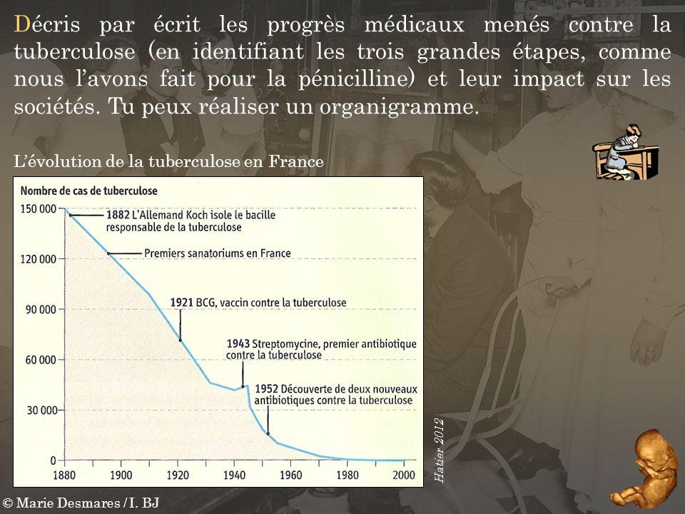 © Marie Desmares / I. BJ Décris par écrit les progrès médicaux menés contre la tuberculose (en identifiant les trois grandes étapes, comme nous lavons