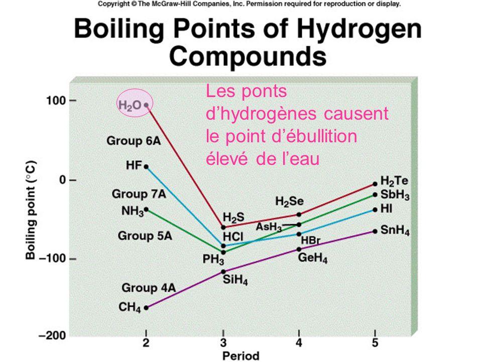 Pont dhydrogène suite Les ponts dhydrogène gardent leau sous sa forme liquide sous une plus grande variété de température que nimporte quelles autres