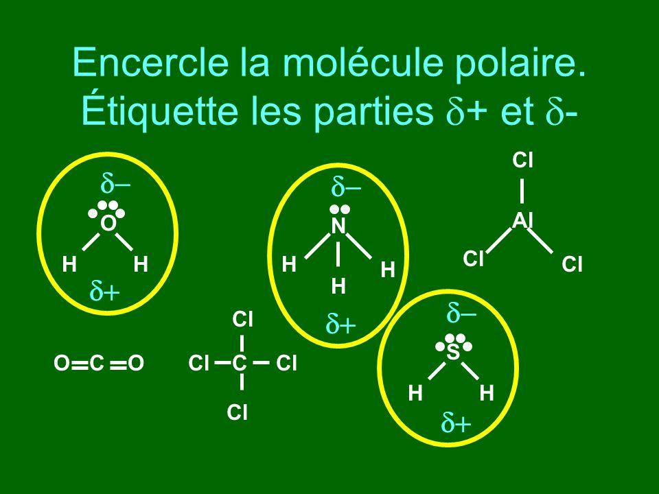 Encercle la molécule polaire. Étiquette les parties + et - O HH N H H H CCOO Al Cl S HH