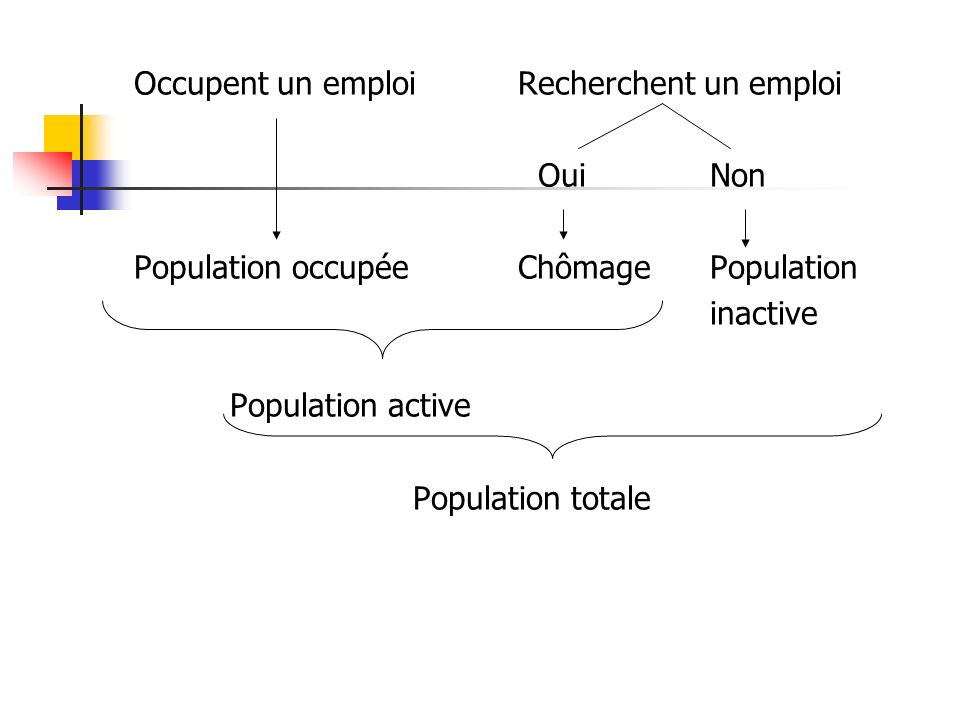 Occupent un emploiRecherchent un emploi Oui Non Population occupéeChômagePopulation inactive Population active Population totale