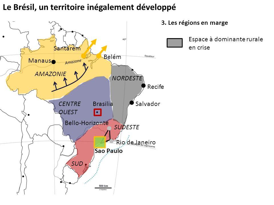 Le Brésil, un territoire inégalement développé 3. Les régions en marge Espace à dominante rurale en crise Sao Paulo SUD SUDESTE Brasilia Bello-Horizon