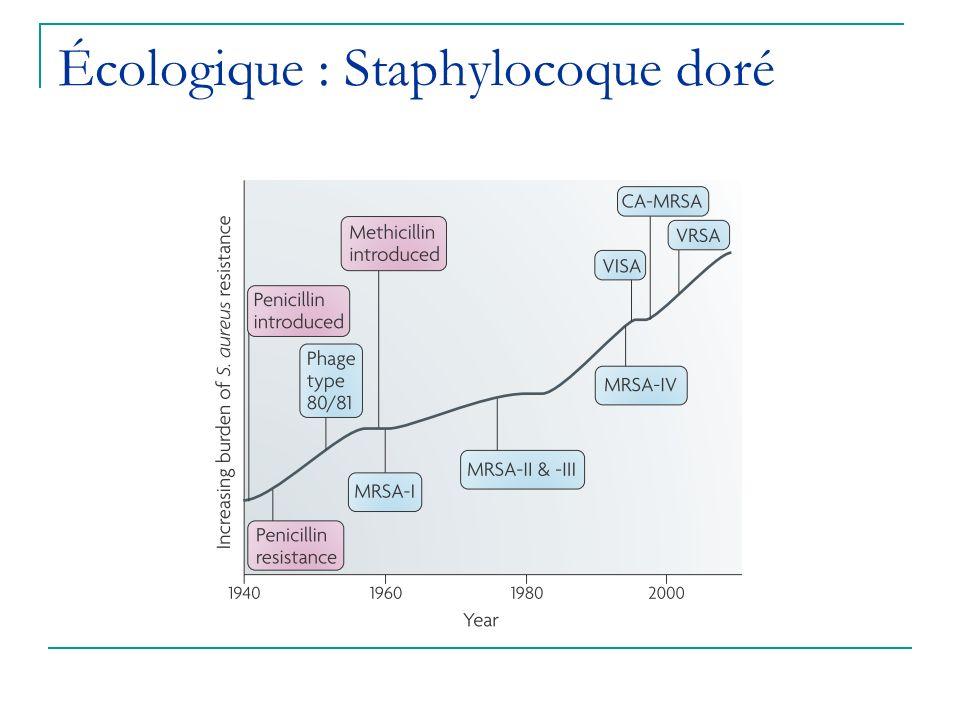 Écologique : Staphylocoque doré