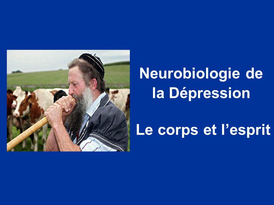 Neurobiologie de la Dépression Le corps et lesprit
