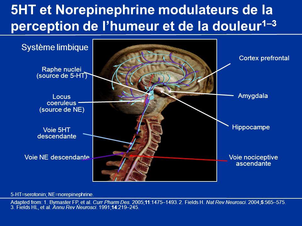 5HT et Norepinephrine modulateurs de la perception de lhumeur et de la douleur 1–3 Locus coeruleus (source de NE) Raphe nuclei (source de 5-HT) Amygda