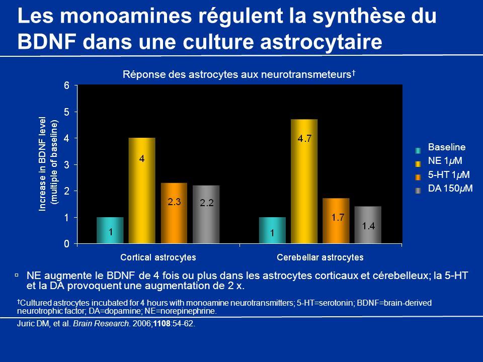 Les monoamines régulent la synthèse du BDNF dans une culture astrocytaire NE augmente le BDNF de 4 fois ou plus dans les astrocytes corticaux et céreb