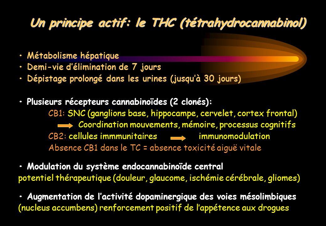 Métabolisme hépatique Demi-vie délimination de 7 jours Dépistage prolongé dans les urines (jusquà 30 jours) Plusieurs récepteurs cannabinoïdes (2 clon