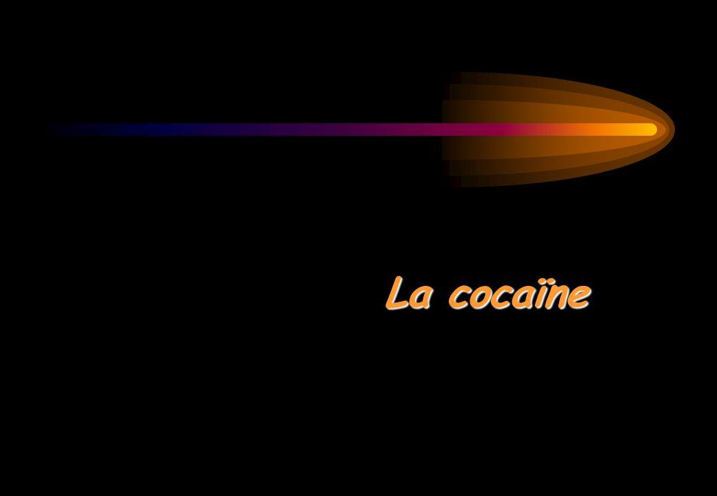 La cocaïne