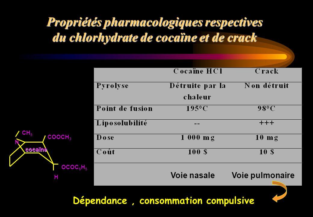 Propriétés pharmacologiques respectives du chlorhydrate de cocaïne et de crack N CH 5 COOCH 3 H cocaïne OCOC 6 H 5 Voie nasaleVoie pulmonaire Dépendan