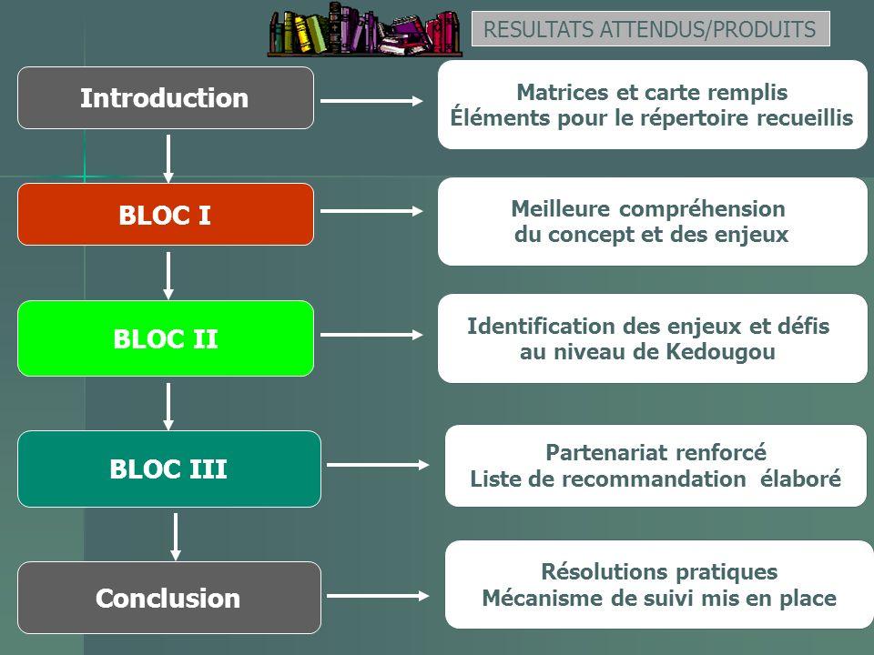 BLOC II Conclusion RESULTATS ATTENDUS/PRODUITS Matrices et carte remplis Éléments pour le répertoire recueillis Partenariat renforcé Liste de recomman
