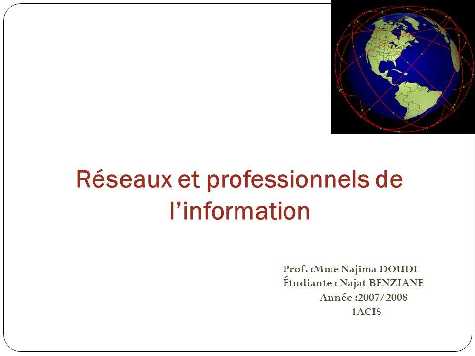 Réseaux et professionnels de linformation Prof.