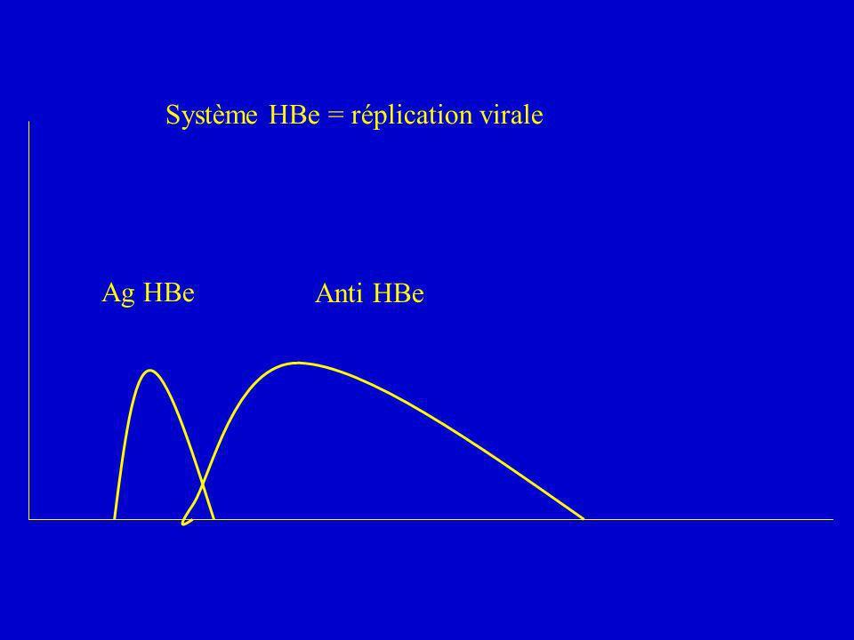 Ag HBe Anti HBe Système HBe = réplication virale
