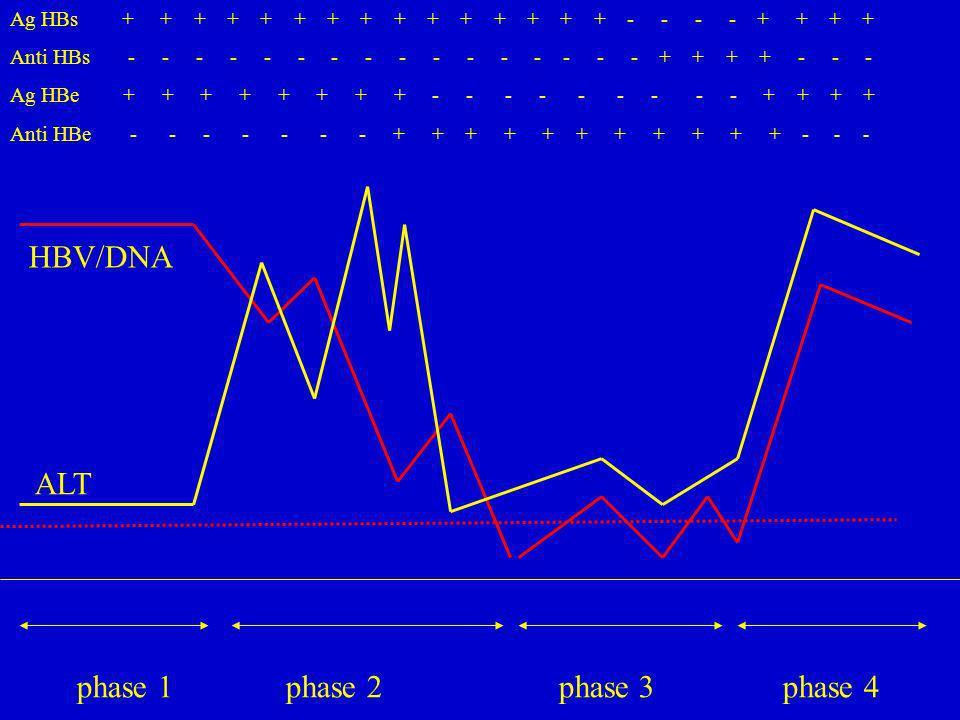 phase 1 phase 2 phase 3 phase 4 Ag HBs + + + + + + + + + + + + + + + - - - - + + + + Anti HBs - - - - - - - - - - - - - - - - + + + + - - - Ag HBe + +
