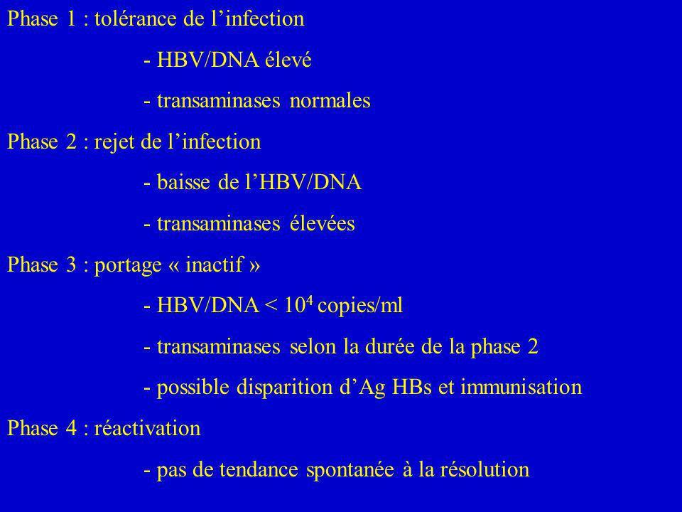 Phase 1 : tolérance de linfection - HBV/DNA élevé - transaminases normales Phase 2 : rejet de linfection - baisse de lHBV/DNA - transaminases élevées