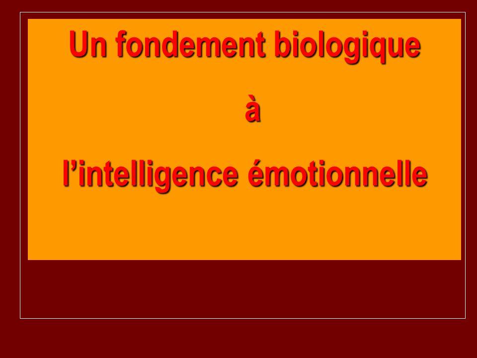 Un fondement biologique à lintelligence émotionnelle