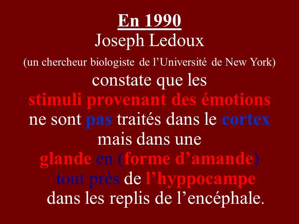 En 1990 Joseph Ledoux (un chercheur biologiste de lUniversité de New York) constate que les stimuli provenant des émotions ne sont pas traités dans le