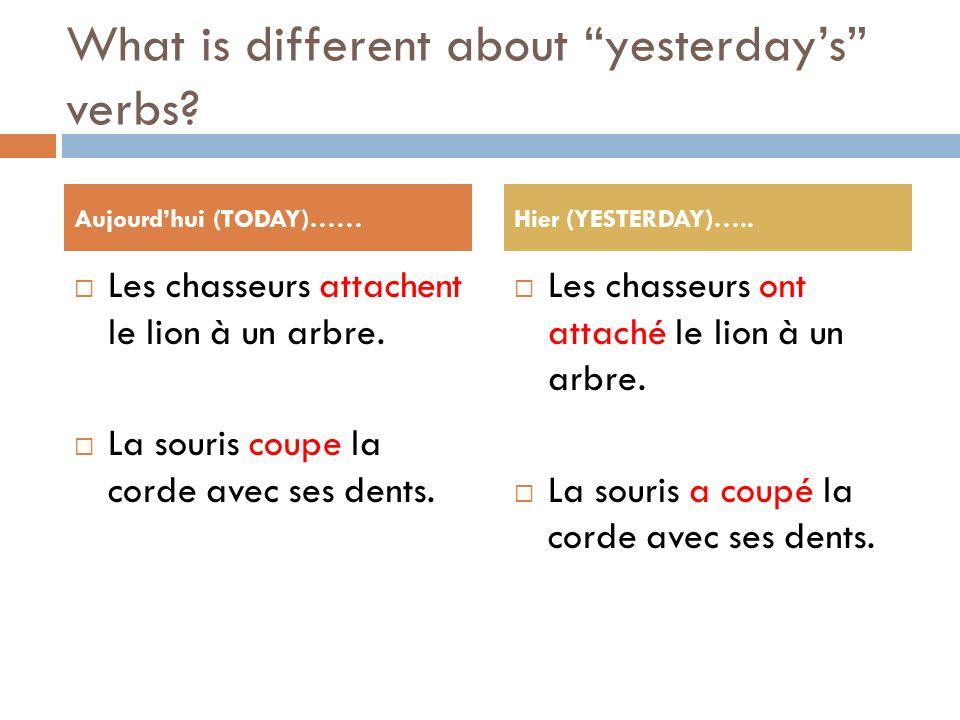What is different about yesterdays verbs? Les chasseurs attachent le lion à un arbre. La souris coupe la corde avec ses dents. Les chasseurs ont attac