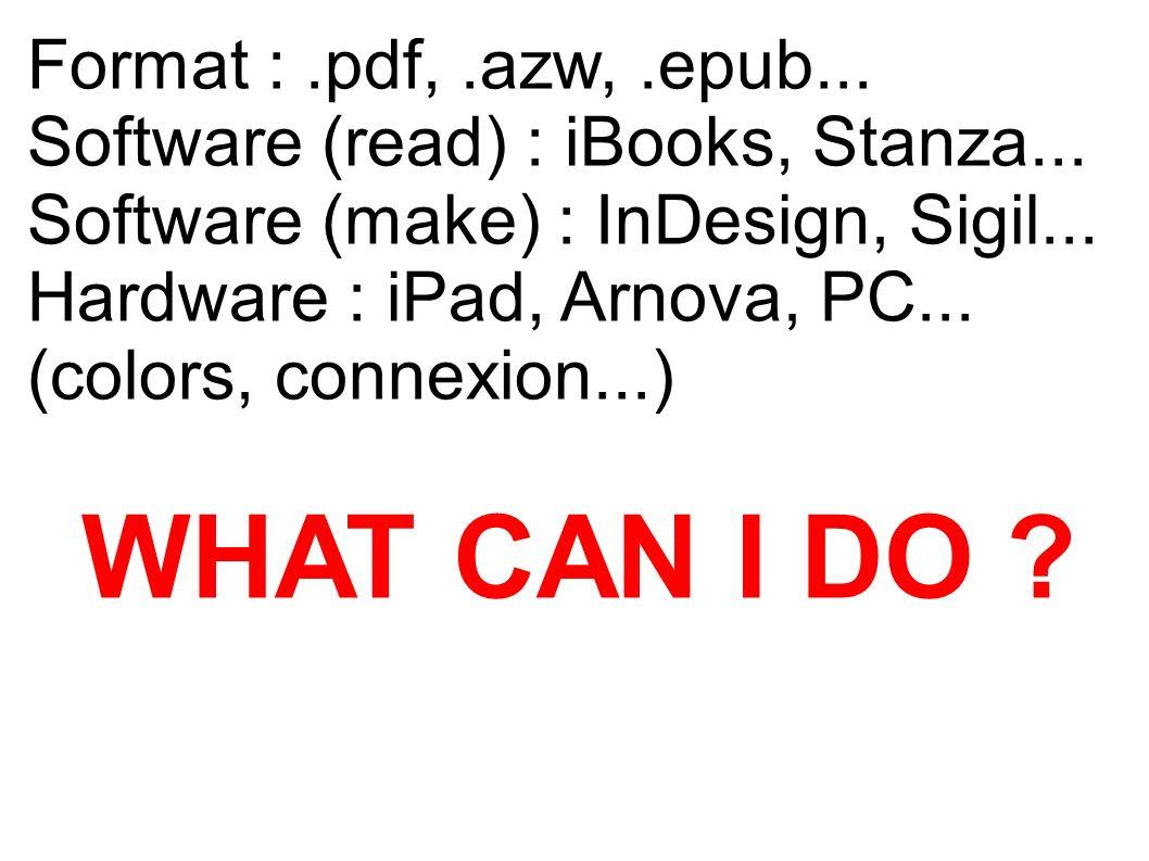 Format :.pdf,.azw,.epub... Software (read) : iBooks, Stanza... Software (make) : InDesign, Sigil... Hardware : iPad, Arnova, PC... (colors, connexion.