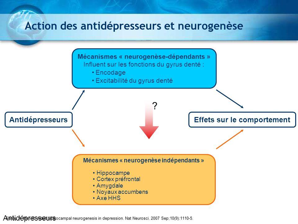 Sahay A, Hen R. Adult hippocampal neurogenesis in depression. Nat Neurosci. 2007 Sep;10(9):1110-5. Action des antidépresseurs et neurogenèse Antidépre