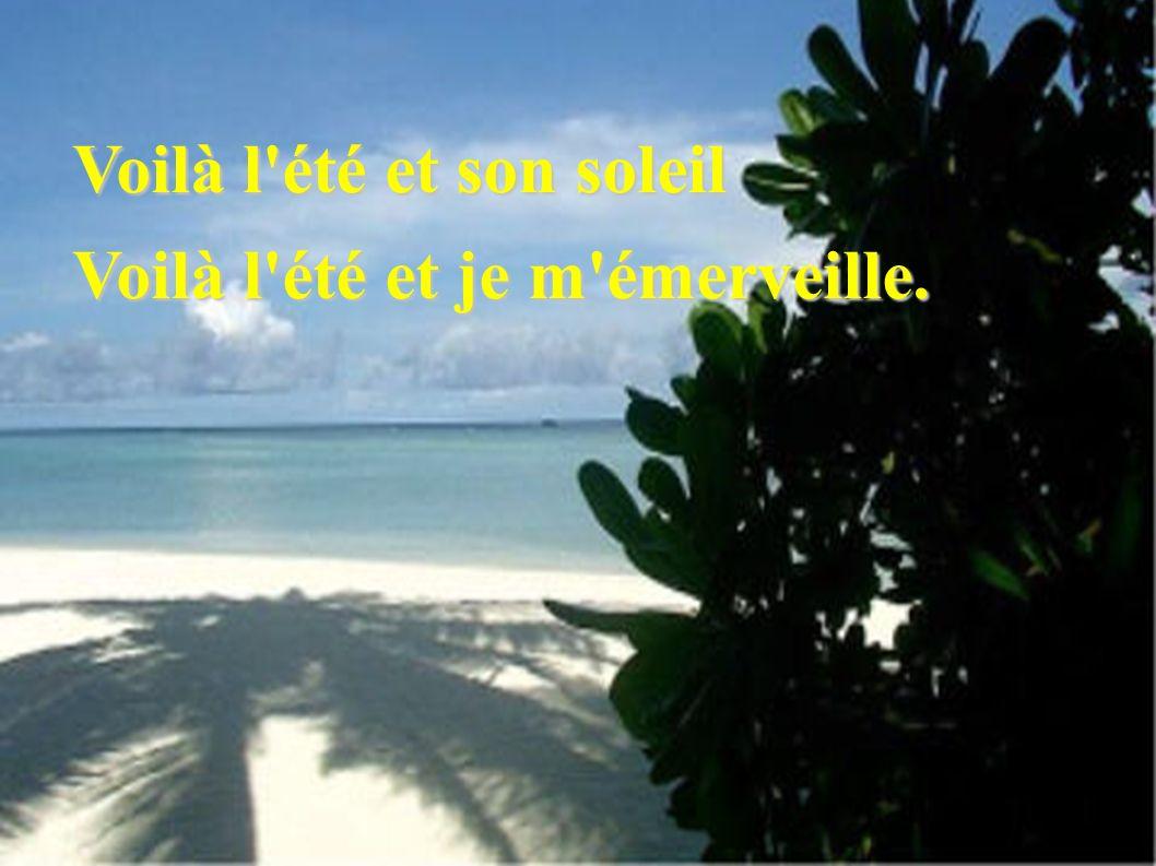 Ciel bleu et mer turquoise... Texte et création de Paula de Paula le 8/08/2007 le 8/08/2007 paula