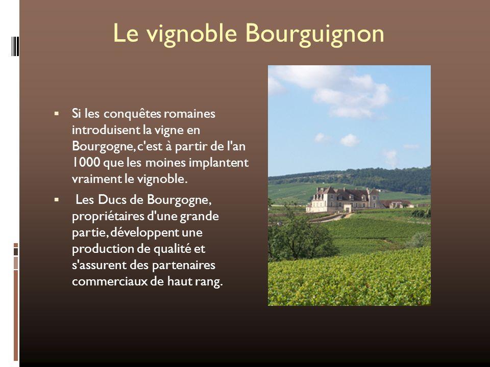 Le vignoble Bourguignon Si les conquêtes romaines introduisent la vigne en Bourgogne, c'est à partir de l'an 1000 que les moines implantent vraiment l