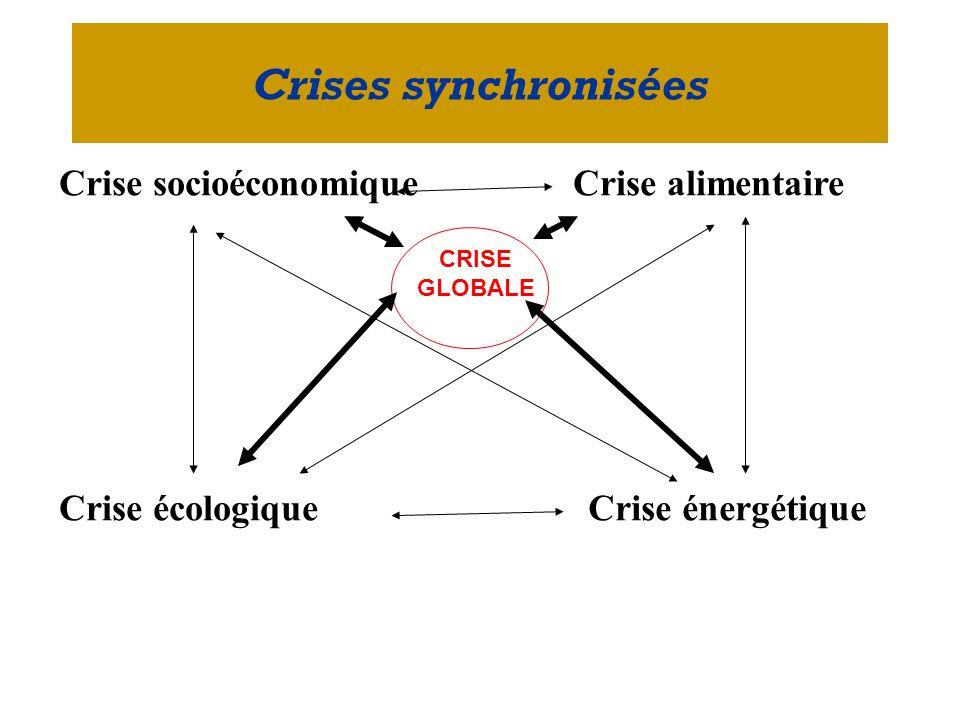 Crise socioéconomiqueCrise alimentaire Crise écologiqueCrise énergétique Crises synchronisées CRISE GLOBALE