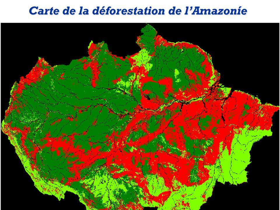 Carte de la déforestation de lAmazoníe