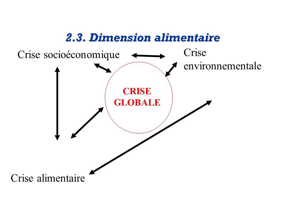 Crise socioéconomique Crise environnementale Crise alimentaire 2.3. Dimension alimentaire CRISE GLOBALE