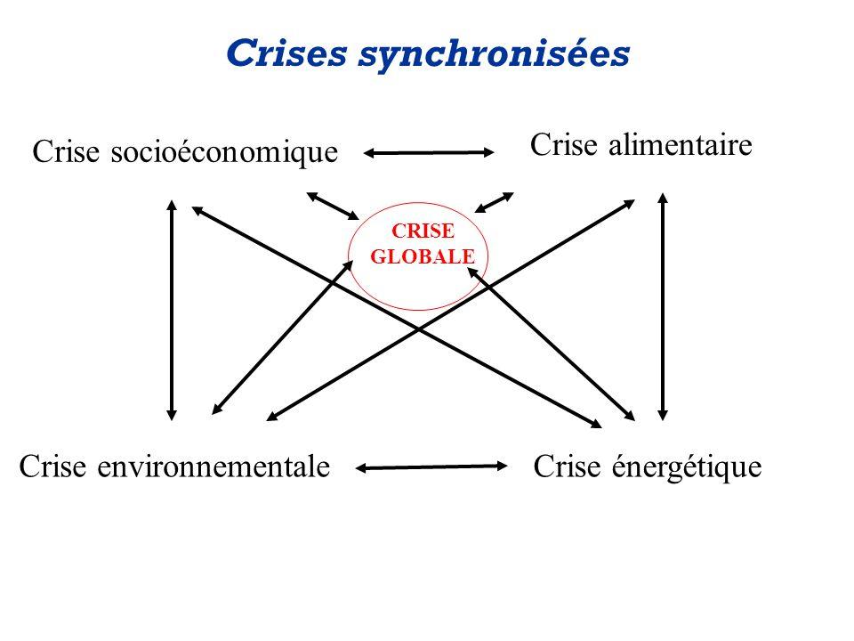 Crise socioéconomique Crise alimentaire Crise environnementaleCrise énergétique Crises synchronisées CRISE GLOBALE