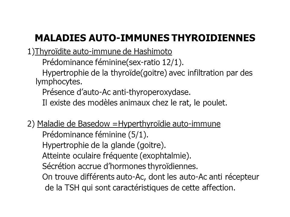 MALADIES AUTO-IMMUNES THYROIDIENNES 1)Thyroïdite auto-immune de Hashimoto Prédominance féminine(sex-ratio 12/1). Hypertrophie de la thyroïde(goitre) a