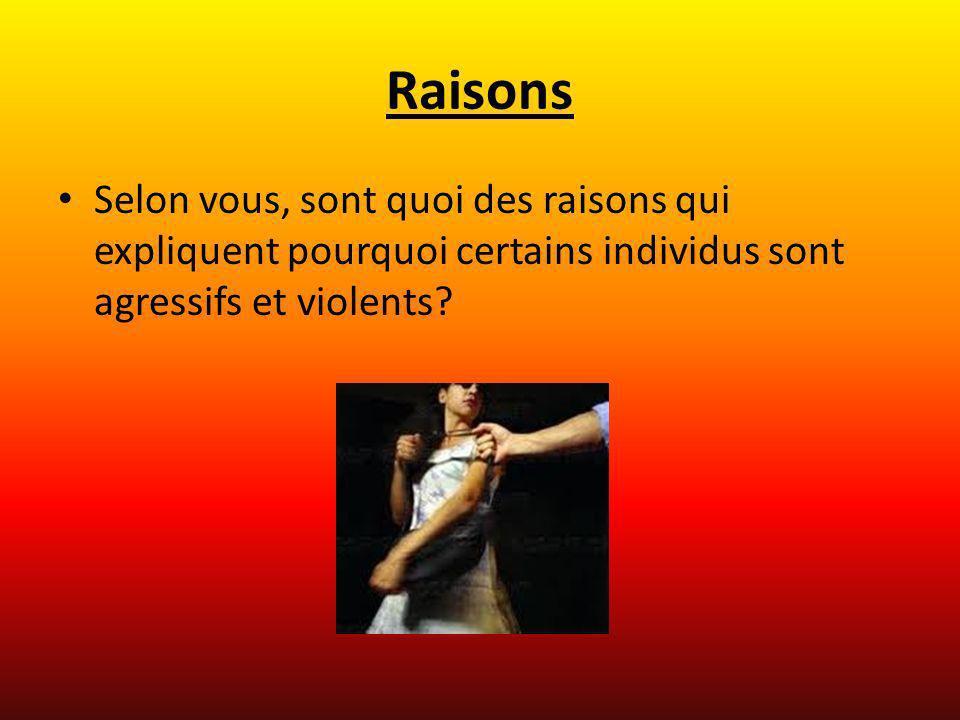 Raisons Selon vous, sont quoi des raisons qui expliquent pourquoi certains individus sont agressifs et violents?