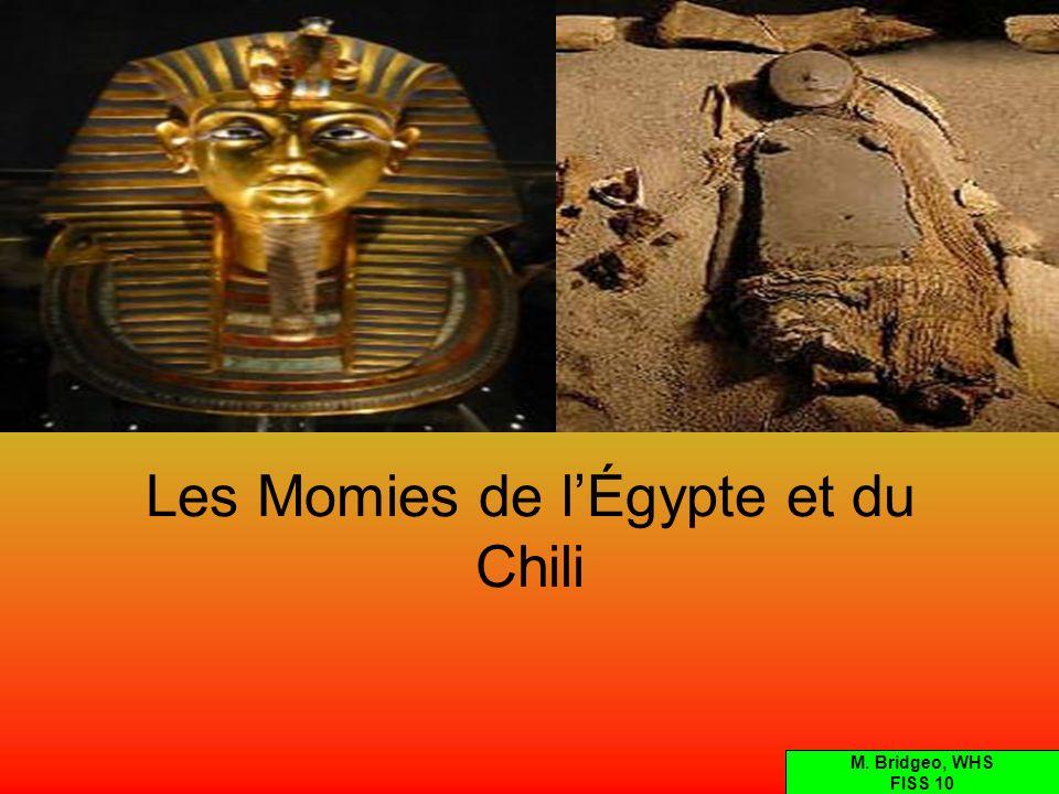 Les Mommies de lÉgypte et du Chili Les Égyptiens ont mommifié leurs citoyens, et parfois des animaux.