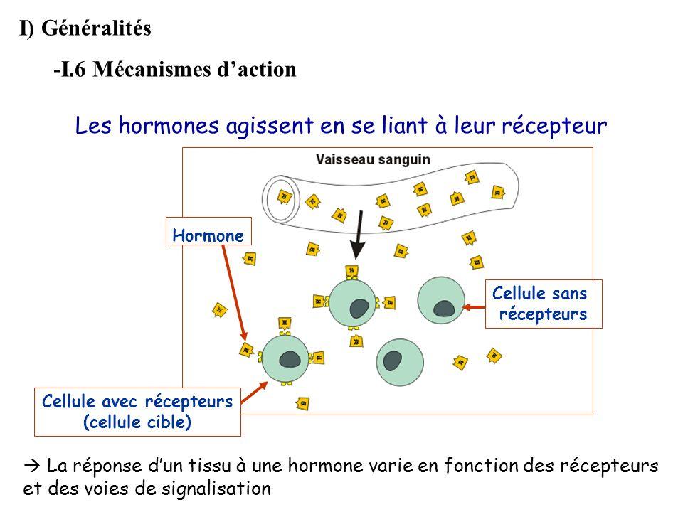 Les hormones agissent en se liant à leur récepteur Cellule sans récepteurs Cellule avec récepteurs (cellule cible) Hormone I) Généralités -I.6 Mécanis