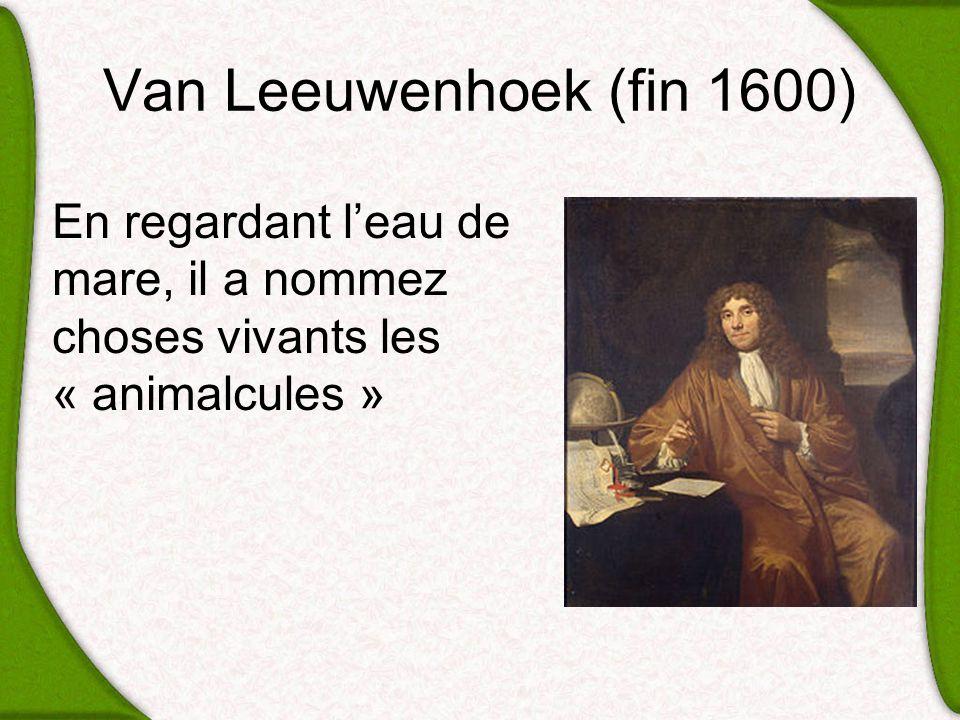 Van Leeuwenhoek (fin 1600) En regardant leau de mare, il a nommez choses vivants les « animalcules »
