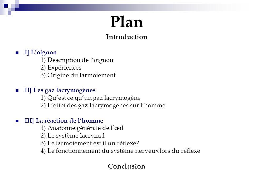 Plan Introduction I] Loignon 1) Description de loignon 2) Expériences 3) Origine du larmoiement II] Les gaz lacrymogènes 1) Quest ce quun gaz lacrymog