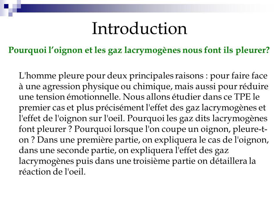 I]Loignon 1. Description de loignon 2. Expériences 3. Origine du larmoiement