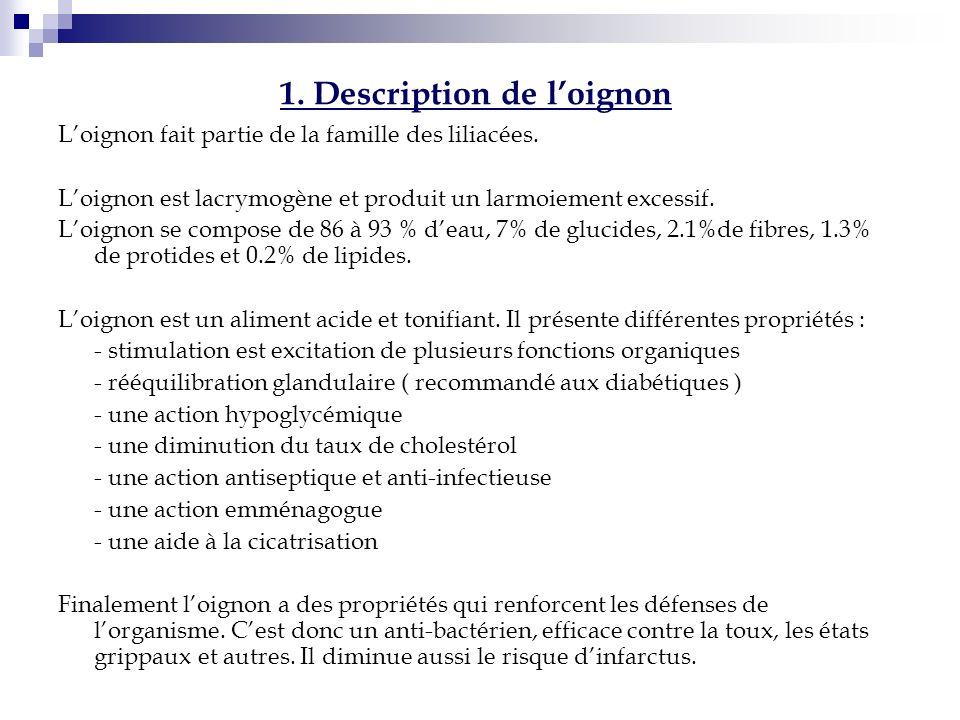 1. Description de loignon Loignon fait partie de la famille des liliacées. Loignon est lacrymogène et produit un larmoiement excessif. Loignon se comp