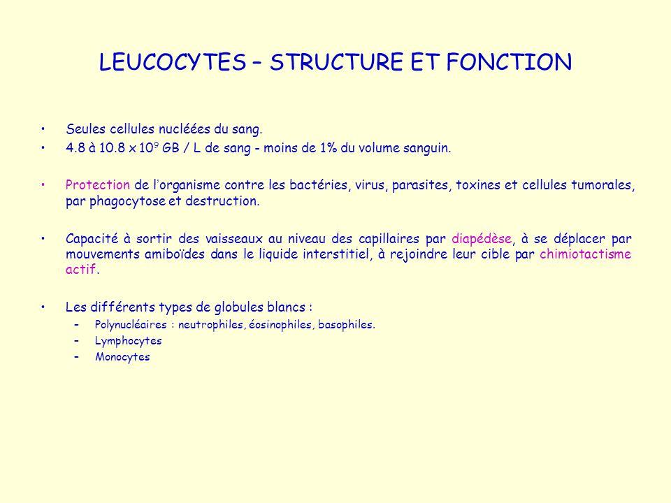 LEUCOCYTES – STRUCTURE ET FONCTION Seules cellules nucléées du sang. 4.8 à 10.8 x 10 9 GB / L de sang - moins de 1% du volume sanguin. Protection de l