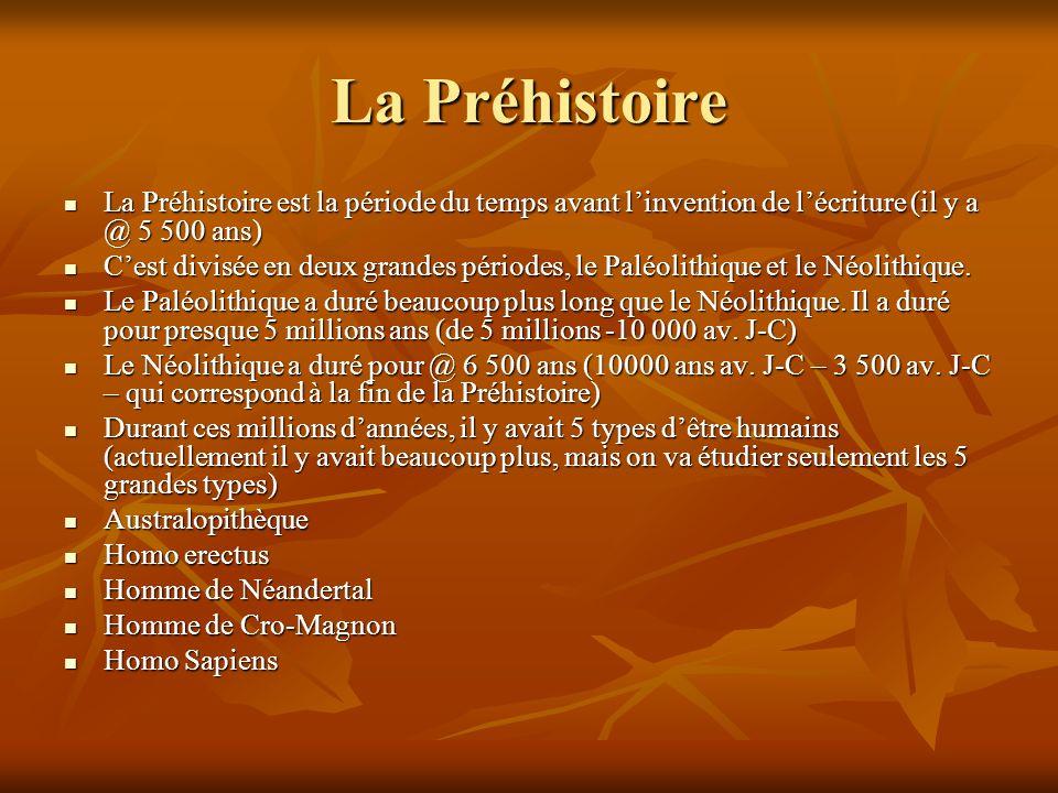 Australopithèque